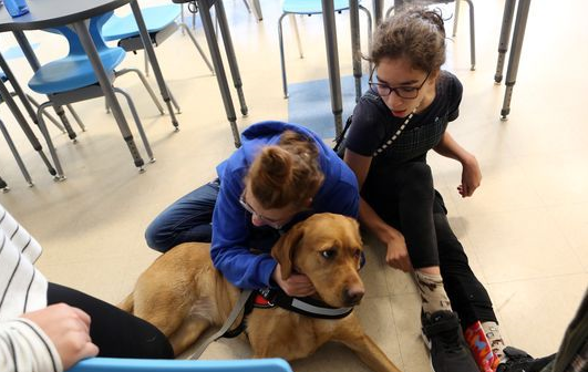 2 students with Ramona, the labrador retriever